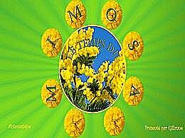 diaporama pps Le temps du mimosa