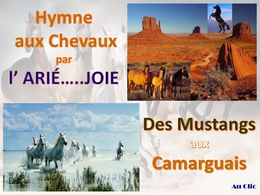 diaporama pps Les chevaux sauvages
