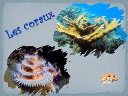 diaporama pps Les coraux