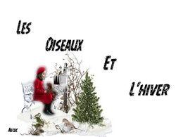 diaporama pps Les oiseaux et l'hiver