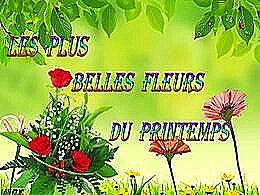 diaporama pps Les plus belles fleurs du printemps