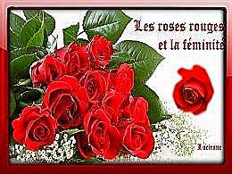 diaporama pps Les roses rouges et la féminité