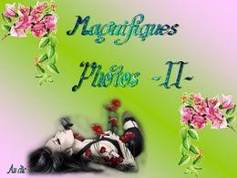 diaporama pps Magnifiques photos II