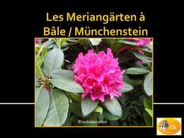 diaporama pps Meriangärten à Bâle