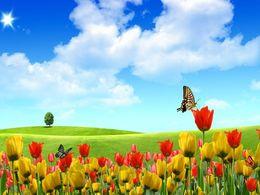 diaporama pps Nature et fleurs