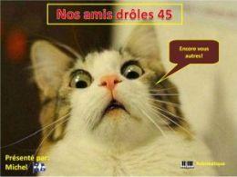 diaporama pps Nos amis drôles 45