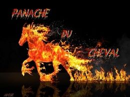 diaporama pps Panache du cheval
