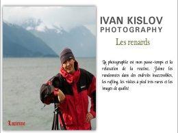 diaporama pps Photos de renard – Ivan Kislov