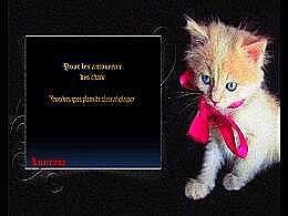diaporama pps Pour les amoureux des chats