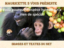 diaporama pps L'espèce humaine n'a rien de spécial