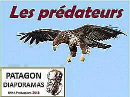 diaporama pps Prédateurs