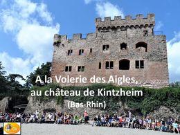 diaporama pps Volerie des aigles – Bas-Rhin
