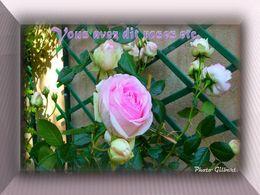 diaporama pps Vous avez dit roses etc…