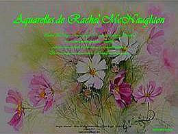diaporama pps Aquarelles de Rachel McNaughton
