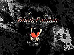 diaporama pps Black panther