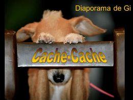diaporama pps Cache cache
