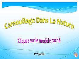 diaporama pps Camouflage dans la nature 2