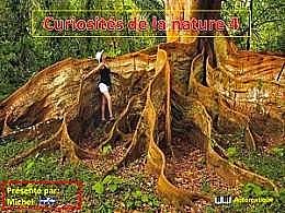 diaporama pps Curiosités de la nature 4