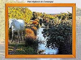 diaporama pps Delta de Camargue