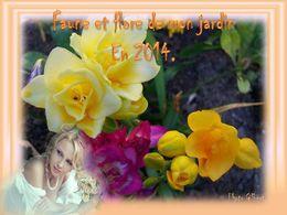 diaporama pps Faune et flore de mon jardin en 2014