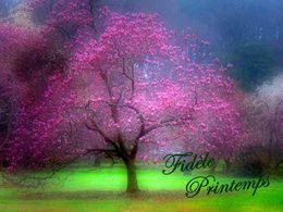diaporama pps Fidèle printemps