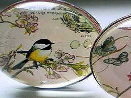 diaporama pps Fleurs et oiseaux