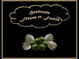 diaporama pps Harmonie fleurs et fruits