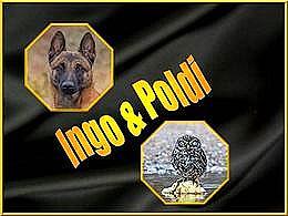 diaporama pps Ingo et Poldi