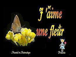 diaporama pps J'aime une fleur – Adamo