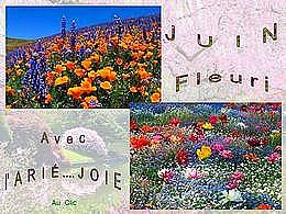 diaporama pps Juin fleuri