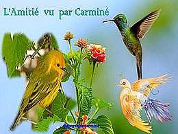 diaporama pps L'amitié vu par Carminé