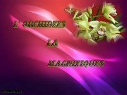 diaporama pps L'orchidée la magnifique