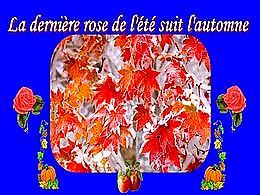 diaporama pps La dernière rose de l'été suit l'automne