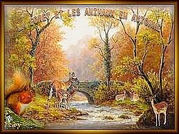 diaporama pps La forêt et les animaux en automne