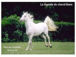 diaporama pps La légende du cheval blanc