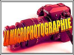 diaporama pps La macrophotographie