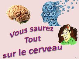 diaporama pps Le cerveau