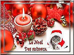 diaporama pps Le Noël des animaux
