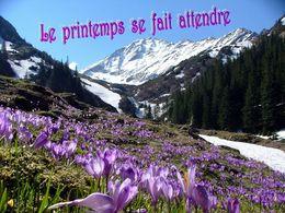 diaporama pps Le printemps se fait attendre