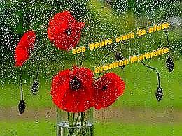 diaporama pps Les fleurs sous la pluie