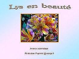 diaporama pps Lys en beauté