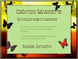 diaporama pps Magnifiques papillons