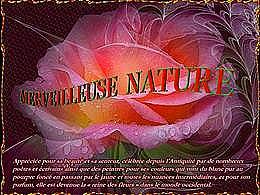 diaporama pps Merveilleuse nature 2