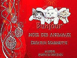 diaporama pps Noël des animaux