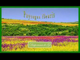 diaporama pps Paysages fleuris