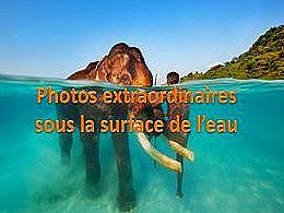 diaporama pps Photos extraordinaires sous la surface de l'eau