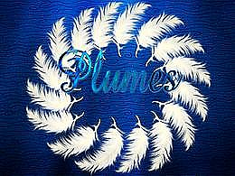 diaporama pps Plumes