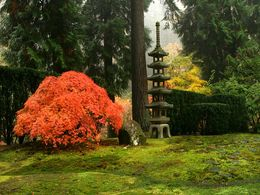 diaporama pps Portland japanese garden USA