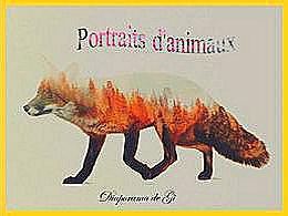 diaporama pps Portraits d'animaux
