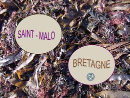 diaporama pps Saint Malo